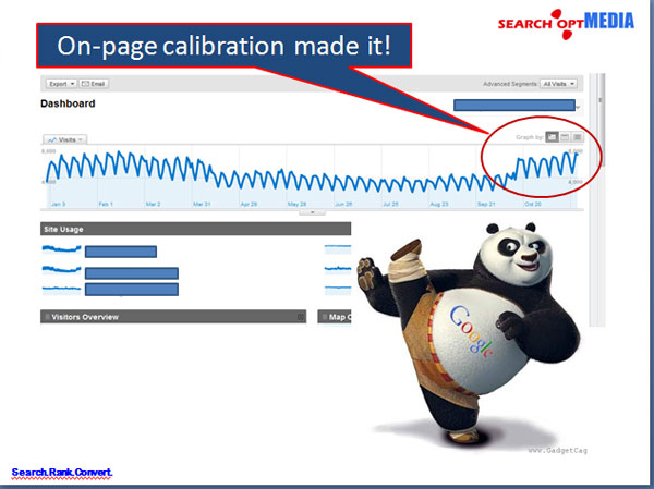 on page site audit panda success